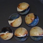 """"" (<a href='/inquire.php?gallery=ceramic&file=DSC08703.JPG&caption='>Inquire about this piece</a>)<br />info: hand built ceramic bowls, desert theme<br />price: $35 each"