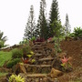 """paula's stairs"" (<a href='/inquire.php?gallery=wallrock&file=paulas_stairs.jpg&caption=paula's stairs'>Inquire about this piece</a>)<br />info: north shore kauai<br />price: 4 love"